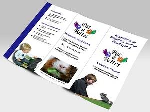 tri-fold-brochure-backside